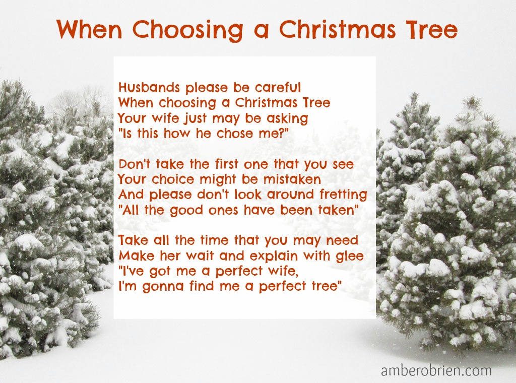 When Choosing a Christmas Tree